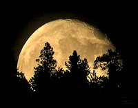Super Moon 1 May 12-3