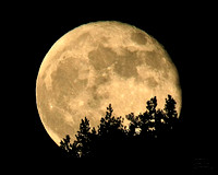Super Moon 3 May 12-3